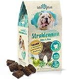 Ida Plus Strahlemann -mit Anti-Zahnstein- & Hunde Mundgeruch Komplex zur Hunde-Zahnreinigung für gesunde Hunde-Zähne - Vitalfood als Hundesnack getreidefrei & ohne Zucker - bis zu 30 Tage