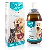 LiquidoCare Immun - Tonicum für Hund & Katze zur Immunstärkung - hohe Akzeptanz kann die Fresslust anregen - Appetitanreger als Nahrungsergänzungsmittel