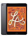 Apple iPad Mini 5 64GB Space Gray WiFi Only Tablet (Generalüberholt)