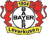 Bayer Leverkusen FC Germany Europe Soccer Football Hochwertigen Auto-Autoaufkleber 12 x 10