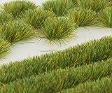 WWS Frühling Selbstklebende Streifen und Büschel Set aus 2mm, 4mm oder 6mm Statische Grasfasern (6mm)