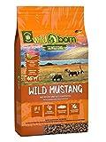 Wildborn Wild Mustang 2 kg getreidefreies Hundefutter mit Pferdefleisch, Süßkartoffel & Aroniabeeren | Monoproteinprodukt auch für Allergiker geeignet