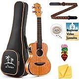 Donner Konzert Ukulele 23 Zoll Ukulele Anfänger Elektrisch Massives Mahagoni Ukulele Elektro Hawaii-Gitarre Kinder Erwachsene DUS-405