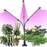 semai Pflanzenlampe LED 30W Pflanzenlicht Pflanzenleuchte Wachstumslampe Wachsen licht Grow Lampe Vollspektrum für Zimmerpflanzen mit Zeitschaltuhr, 3 Arten von Modus, 6 Arten von Helligk