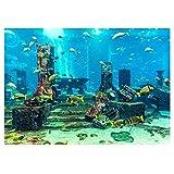 Nannday Aquariumrückwand aus PVC, Koralle Hintergrund Folie, Selbstklebend Unterwasser-Plakat, Wandaufkleber, für Fische