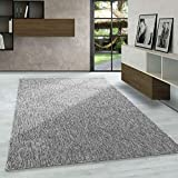 Carpetsale24 Kurzflor Teppich Flachgewebe Schlingenteppich Kettelteppich Meliert Hellgrau, Maße:200 cm x 290 cm