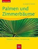 Palmen und Zimmerbäume: Standort · Pflege · Vermehrung