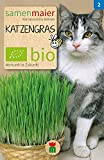 BIO Katzengrassamen ♥ - 1 Beutel