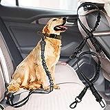 Hunde-Sicherheitsgurt, verstellbar, elastisch, langlebig, reflektierendes Nylon, für kleine, mittelgroße und große Hunde, für den täglichen Gebrauch und auf Reisen