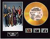 Aerosmith CD-Display mit Vinyleffekt, Schwarz oder Gold, mit 3 Filmzellen (Gold Disc, A Little South Of Sanity, ungerahmt)
