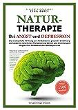 NATURTHERAPIE BEI ANGST UND DEPRESSION: Die erstaunliche Wirkung von Heilkräutern, gesunder Ernährung und anderen natürlichen Therapien auf Gehirn und ... im Vergleich zu herkömmlichen Antidepressiva