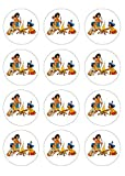 12 Muffinaufleger ca. 6 cm zum selbst ausscheiden, Cupcakes Muffinsbild Geburtstag Motiv: Yakari , Fondant 0523x