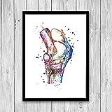 Rac76yd Knie, Anatomie, Kunst, Aquarelldruck, orthopädischer Chirurgen, Geschenk, Arzt, Büro, Dekoration, medizinisches Poster