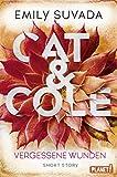 Cat & Cole: Vergessene Wunden: Short Story