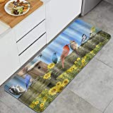 MATEKULI Küchenläufer,Vogelkongregation auf verwittertem Zaunbrett,Waschbar rutschfest Küchenmatte Küchenteppich Waschbar Teppich Läufer