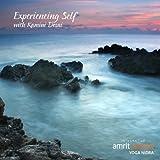 Experiencing Self: Yoga Nidra Turiya Meditation by Desai, Kamini (2010-03-11)