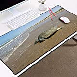 beautiful HD wallpaper images printed mousepad big size 300x800x3MM large table mat to decorate desktop gaming mouse