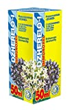 Immunoxel 50ml Phyto Konzentrat - Natürliche Pflanzenextrakte - Effektiver Immunkomplex