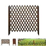 Picket-Zaun-Panels, Teleskop-Mesh-Zaun for Pflanze Klettern Trellis Garden Partition Dekorative (Size : 80x31cm)
