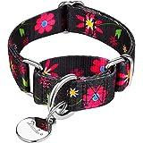 Dazzber Hundehalsband für Welpen, Blumenmuster, Martingale-Halsband, kein Ziehen, strapazierfähig, verstellbar, extra klein, 20,3 - 27,9 cm, Sonnenblume (schwarz)