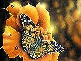 DIY Diamant Malerei Schmetterling und Blume 5D Strass Stickerei Mosaik Kreuzstich Kit Home Diamant Malerei A9 45x60cm