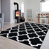 TAPISO Luxury Teppich Kurzflor Modern Marokkanisch Geometrisch Gitter Kleeblatt Muster Schwarz Weiss Wohnzimmer ÖKOTEX 80 x 150 cm