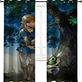 aotuma Legends of Zelda Breath of the Wild Daruk Game Anime Cool Kinder Verdunkelungsvorhänge Ösen Thermoisoliert Raumverdunkelung 106,7 cm B x 137,2 cm L