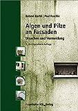 Algen und Pilze an Fassaden: Ursachen und Vermeidung