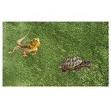 Tfwadmx Kunstrasen Schildkröte Teppich Matte Reptilien Substrat Liner Streu Reptilien Zubehör für Terrarium Eidechsen Schlangen Bartdrachen Gecko Chamelon Schildkröten Leguan (100,1 cm 50 cm)