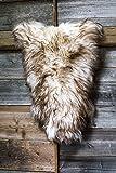 Estro | Echt ISLÄNDISCHER Schafsfell Lammfell Teppich | Glänzend und luxuriös | Farbvielfalt ESI (Wolf Tip, 110 cm)