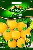 Rondini (Zucchini), Floridor Quedlinburger Saatgut Samen 290485