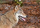 Begegnungen DER WOLF (Wandkalender 2022 DIN A3 quer)