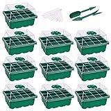 YARNOW Sämling Starter Trays mit Deckel Tray Tools Anlage Wachsen Trays Keimung Tablett Kit Mini Propagator Anlage Wachsen Kits für Pflanzen Wachsenden