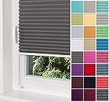 Home-Vision® Premium Plissee Faltrollo ohne Bohren mit Klemmträger / -fix (Graphit, B75cm x H150cm) Blickdicht Sonnenschutz Jalousie für Fenster & Tü