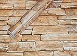 Visario Tapeten Folie 3000-S selbstklebend 10m x 45cm 5 Motive Steinoptik Steine Dekorfolie Möbelfolie Tapete (3007)