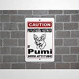 godblessign Property Protected By Pumi Guard Hundewarnschild aus Aluminium, 20,3 x 30,5 cm, reflektierendes Metallblechschild für drinnen und drauß