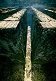 JUHAO 1000 Puzzleteile, Puzzles Für Erwachsene Und Kinder, Klassische Spiele-Das Maze Runner Filmplakat Puzzle-Nummer Puzzles, DIY Spielzeug, Geschenke