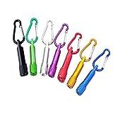 Schlüsselanhänger Taschenlampe(7 Stück),Portable Bunte Mini LED Taschenlampe Fackel Licht Karabiner Tasche Schlüsselanhänger Outdoor für Wandern Klettern Geburtstagsfeier usw (Zufällige Farbe)