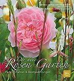 Der neue Rosen-Garten: Partnerpflanzen & Beetgestaltung