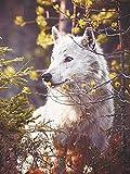 QRKJ 4000 Stück Holz Tier Puzzle für Erwachsene-Lonely Wolf-Puzzle Color Challenge Puzzles für Erwachsene und Kinder Bildung Geschenk