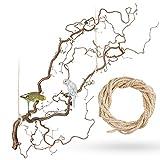 Große Korkenzieherhasel Sitzstange zum Aufhängen mit toll verschnörkelten Zweigen | Der wohl Beste Vogelspielplatz für Wellensittich, Nymphensittich, Kanarienvogel
