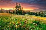 VLIES Fototapete-250x186 cm-LANDSCHAFT-(PF5383)-Natur Wald See Bäume Berge Ansicht Panorama Wandbild Wandtattoo Poster Dekoration