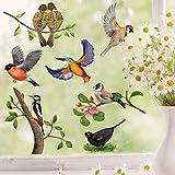 Wandtattoo Loft Fensterbild Frühling Ostern selbstklebend Vogel Wiederverwendbar Vögel / 2. DIN A3