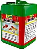Tetra Pond MediFin (universell wirkendes Arzneimittel für alle Gartenteichfische, hilft effektiv und schnell gegen Hautparasiten und bakterielle Hautinfekte), 3 Liter Flasche