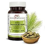 Ackerschachtelhalm Tabletten 950 mg, 90 Tabletten, Premium Qualität, Hergestellt in Österreich, (Equisetum arvense), Tabletten statt Kapseln, Vegan