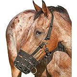 Cashel Maulkorb und/oder Fressbremse Halfter–alle Größen, schwarz, Arab, Cob, Quarter Horse