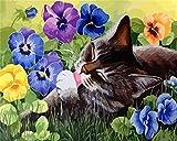 DIY Malen nach Zahlen Leinwand Kits Katze Dekor für Zuhause Unframe Acrylfarbe Färbung nach Zahlen Tier handgemaltes Geschenk A5 30x30