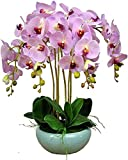 Künstliche Orchidee Bonsai mit Vase, lebhafte Phalaenopsis, künstliche Pflanzen, Orchideen, Blumen, Blumenarrangements für Tischdekoration, Wohnkultur, W