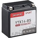 Accurat Motorradbatterie YTX14-BS 12Ah 200A 12V AGM Starterbatterie in Erstausrüsterqualität leistungsstark rüttelfest ABS geeignet wartungsfrei