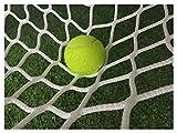 Tennis Netz Training, Tennisnetz Outdoor, Ballfangnetz Übungsnetze Ersatznetz Torwand Netz Fußballtor Ersatz Tornetz Fussballtor Fussball Tor Absperrung Tore Ball Football Netze Soccer Goal Net